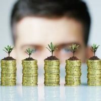 Stacks of coins with little plants growing from top