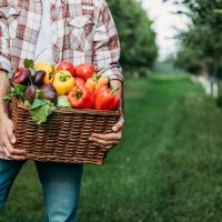 How to Make Money with a Hobby Farm: The Unsung Super Hero Of Side Hustles
